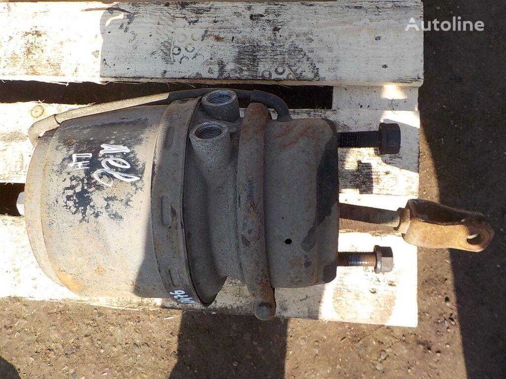 Pruzhinnyy  LH acumulador de energia para DAF camião