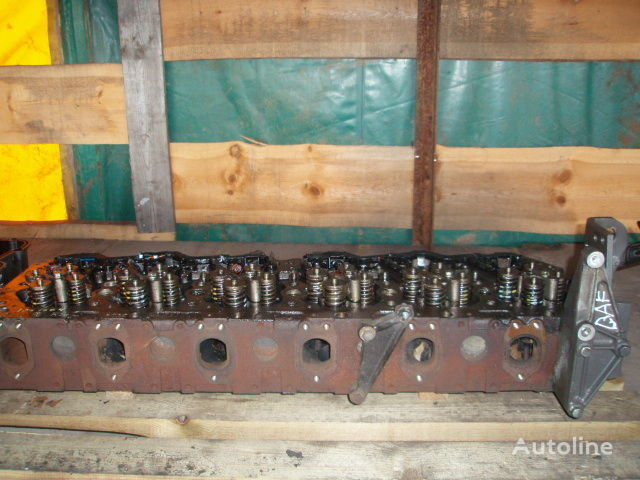cabeça do bloco de cilindros para DAF XF 105 camião tractor