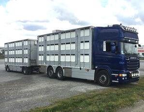 camião de transporte de gado SCANIA R620 V8 For animal transport - do zywca + reboque transporte animais