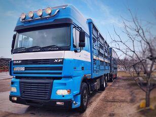 camião de transporte de gado PEZZAIOLI + reboque transporte animais