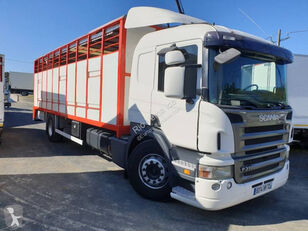 camião de transporte de gado SCANIA P