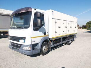 camião frigorífico DAF 45.220 SURGELATI ATP 10/2024 - 120QLI